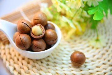 macadamia | Longevity LIVE