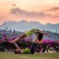 yoga | Longevity LIVE
