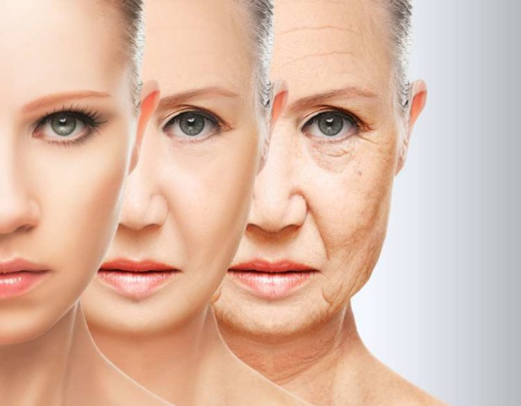 anti-age your skin | Longevity LIVE