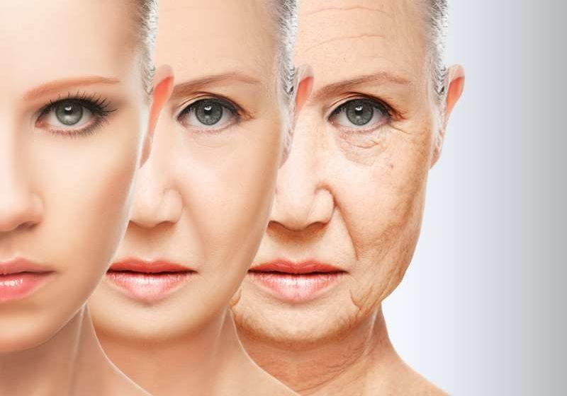 aging | Longevity LIVE