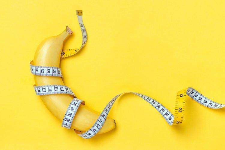 penis size | Longevity LIVE