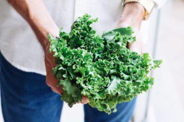 kale | Longevity LIVE