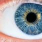 iridology | Longevity LIVE